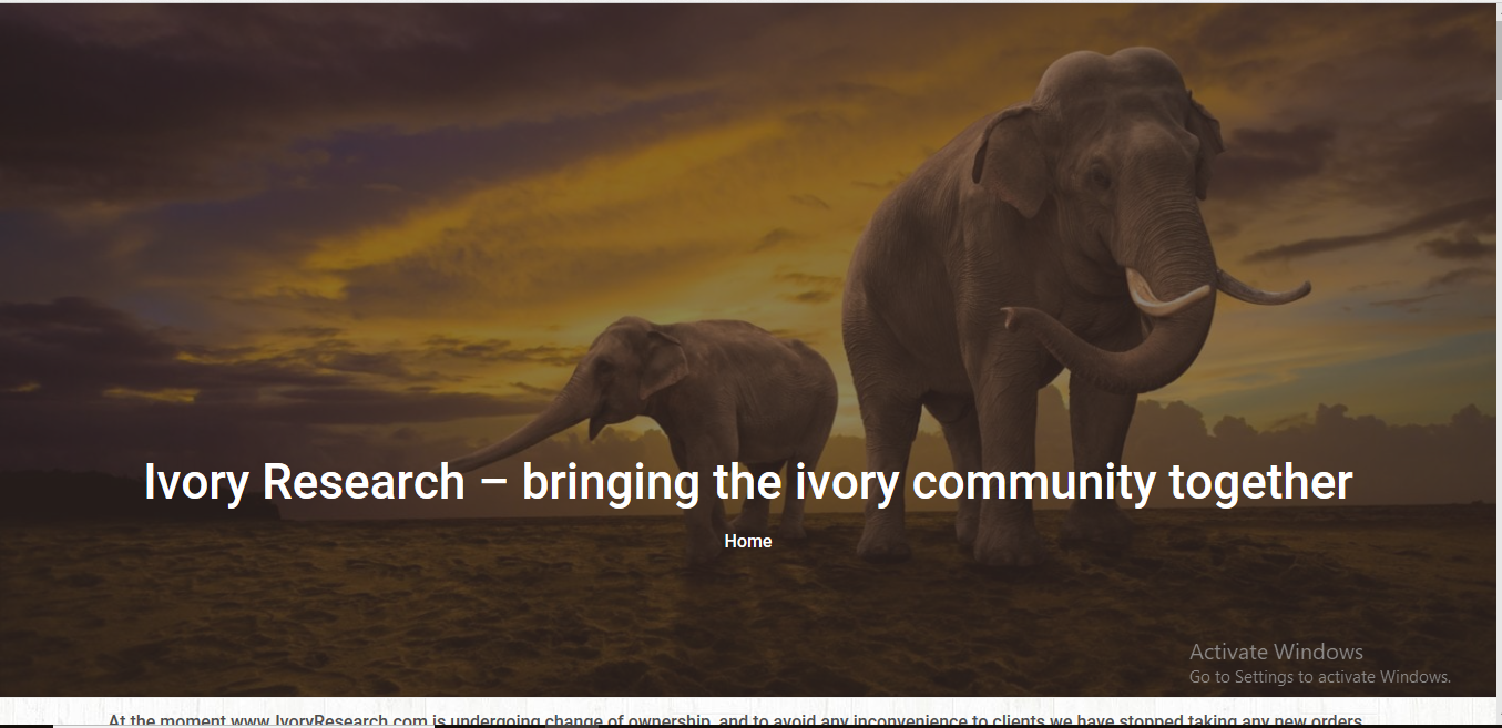 ivoryresearchcom review